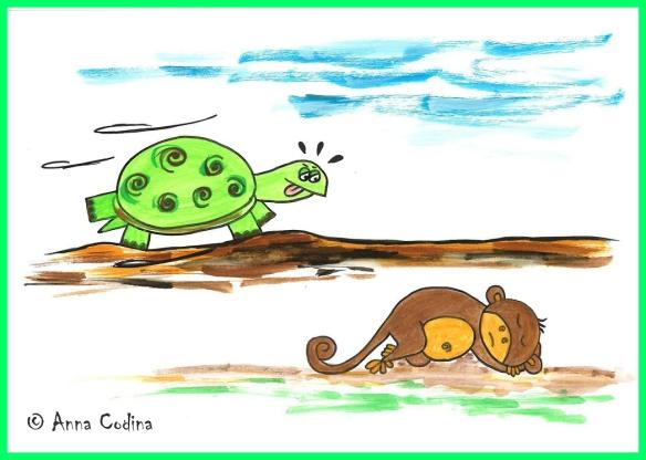 Conte-tortuga1